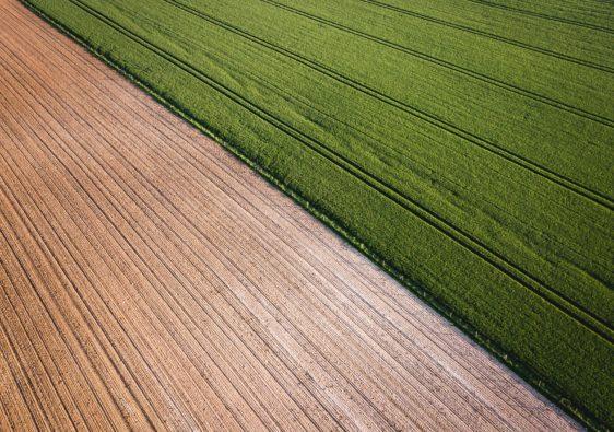 champs_agricoles
